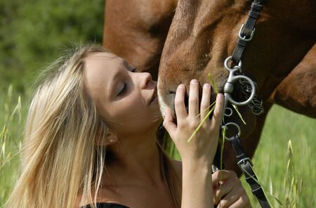 blond brown: young woman kissing her brown stallion in a field