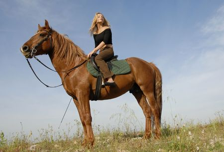blond girl and her beautiful brown stallion in a field
