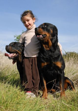 little girl and her two dogs purebred rottweilers