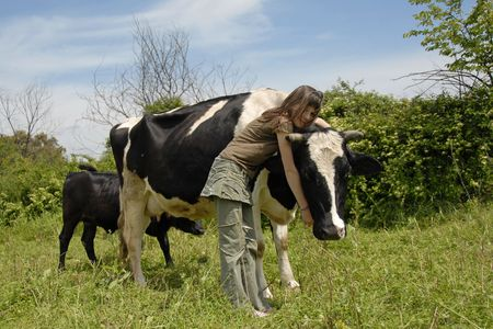beautiful cow: young teen and her friend black and white cow with her calf