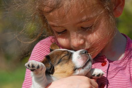 little girl and her very young puppy jack russel terrier