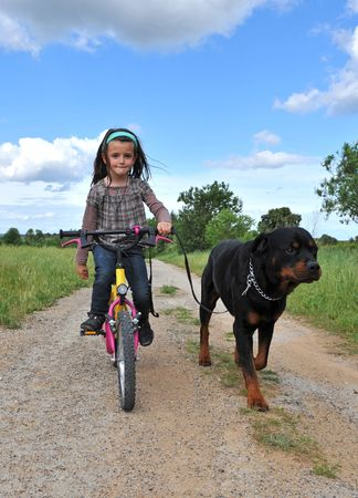 rottweiler: little girl with her purebred rottweiler on a bicycle