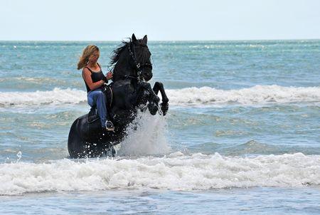 caballo de mar: mujer joven en la crianza de un caballo negro en el mar