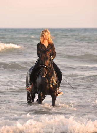 blond woman on her stallion in the sea photo