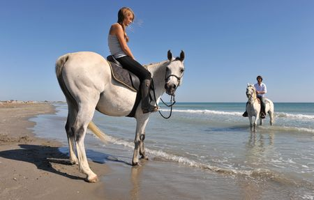 father and daughter with arabian and camargue horses on the beach. focus on the girl photo