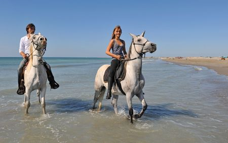 father and daughter with arabian and camargue horses on the beach photo