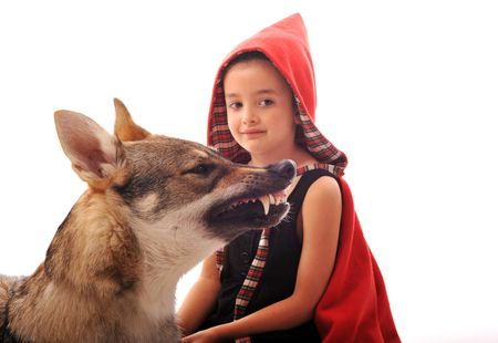 riding wolf: Little Red Riding Hood and angry wolf,focus on the animal. Stock Photo