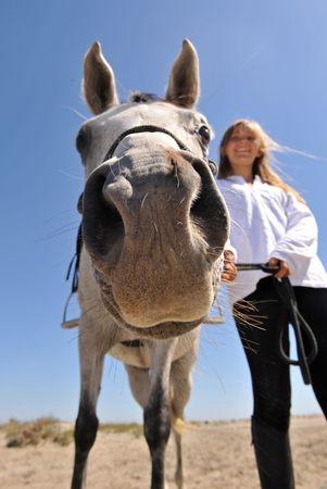 humoristic: humor�stico foto de un sonriente adolescente y su caballo �rabe, se centran en la nariz