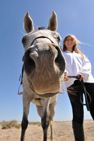 humoristic: humoristic picture of a smiling teen and her arab horse, focus on the nose