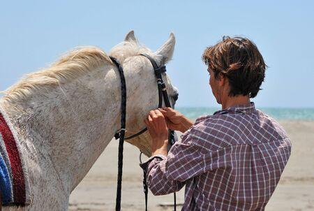 man making a bridle to his horse on a beach photo