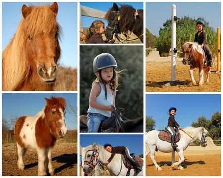 little girl and her best friend shetland pony photo