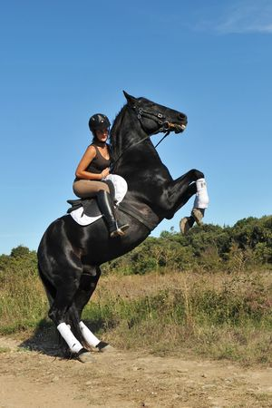 rearing: young woman and her beautiful black stallion rearing up Stock Photo