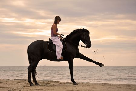 animaux cirque: magnifique �talon noir sur la plage avec une jeune femme Banque d'images