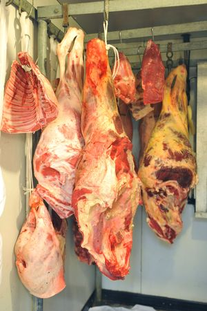 refrigerator with food: refrigerator with red meat in a butcher shop