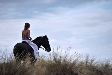young woman and her black stallion in a field photo