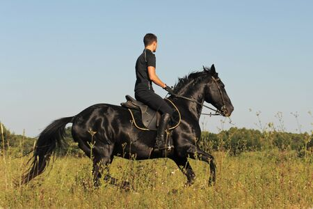 young man and his black stallion in a field photo