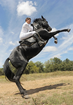 rearing: young man and his beautiful black stallion rearing up Stock Photo