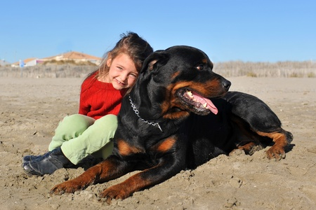 portrait of a purebred rottweiler and little girl on the beach photo