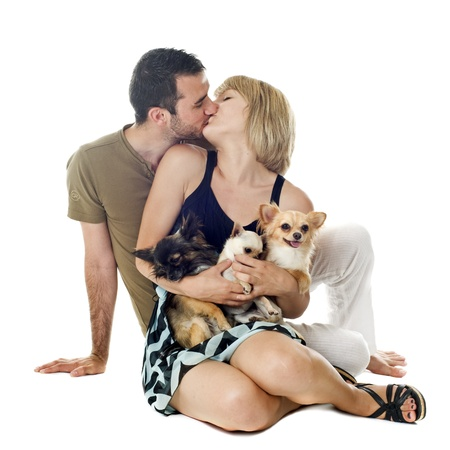 Romantic young couple with chihuahuas in front of white background photo