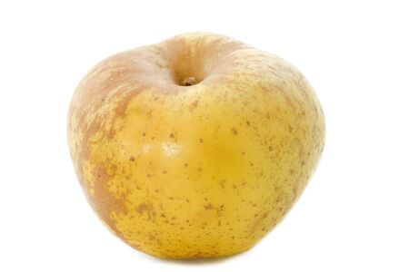russet: Golden russet apple in front of white background