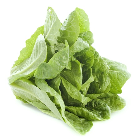 romaine: Romaine lettuce in front of white background