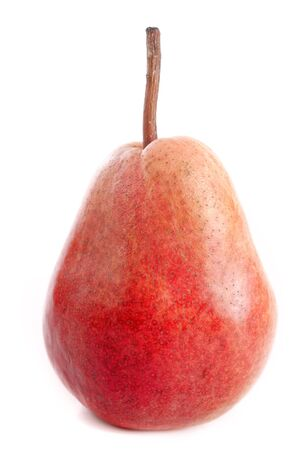 bonne: Louise Bonne pear in front of white background