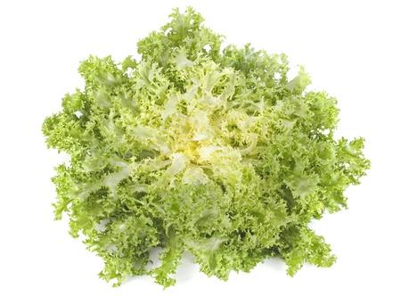 endivia: frisee endibias ensalada de escarola delante de fondo blanco