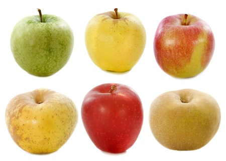 golden apple: group of apples in front of white background Stock Photo