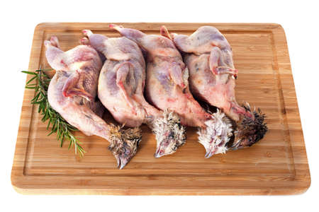 four quails carcasses on a cutting board Stock Photo - 17333385