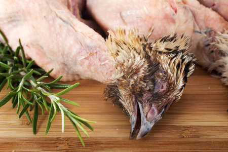 quail carcasson a cutting board with rosemary Stock Photo - 17333383