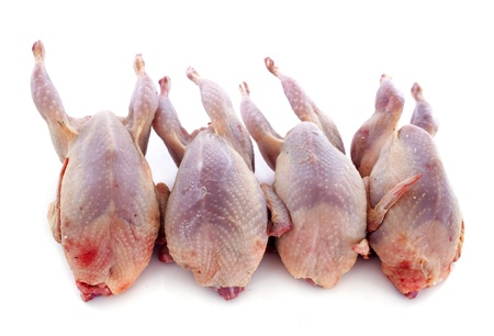 carcass meat: four quails carcasses on a cutting board