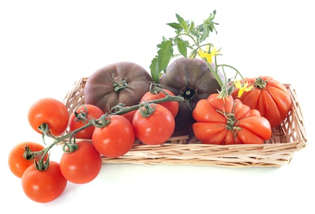 varieties of tomatoes in front of white background Stock Photo - 20752191