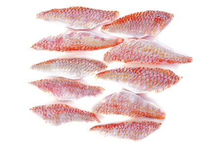 fillets of goatfish in front of white background photo