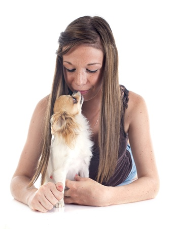 young dog and her chihuahua in front of white background photo