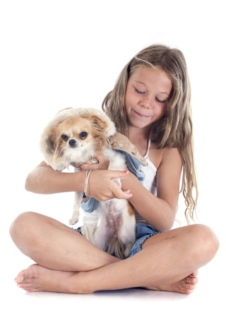 young girl and dressed chihuahua in front of white background Stock Photo - 22111592