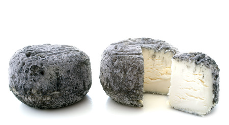 cinders: goat cheeses crottin de chavignol in front of white background Stock Photo