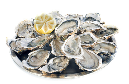 Franse oesters voor witte achtergrond Stockfoto