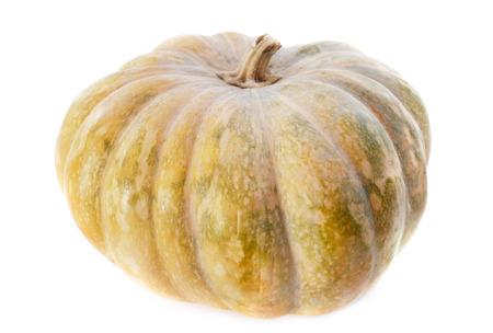 orange pumpkin in front of white background Stock Photo - 23580150