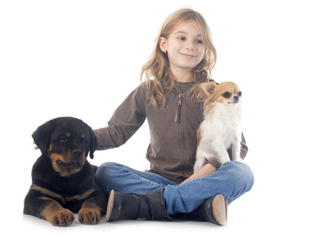 child and dogs in front of white background Stock Photo - 23648736
