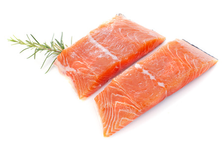 salmon fillets in front of white background Stock Photo - 23637032