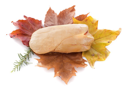 foie gras: foie gras on leaf in front of white background Stock Photo