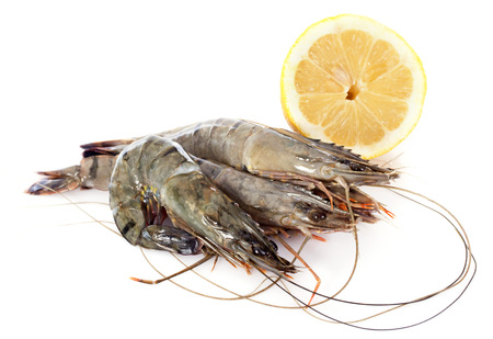 gambas: raw gambas in front of white background Stock Photo