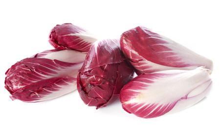 carmine: chicory carmine in front of white