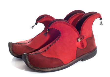 imp: elf shoes in front of white background