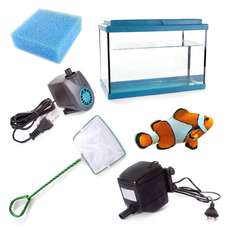 tank: aquarium equipment in front of white background