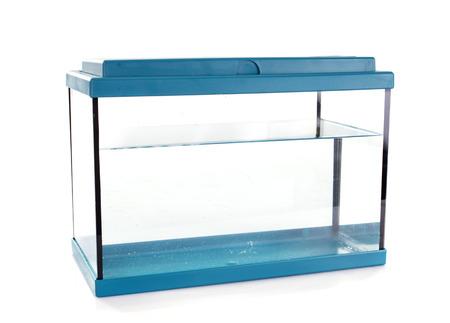 blauwe aquarium in de voorkant van de witte achtergrond Stockfoto