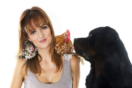 beautiful background: young woman, dog and chicken in front of white background