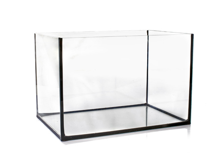 fish water: empty aquarium in front of white background