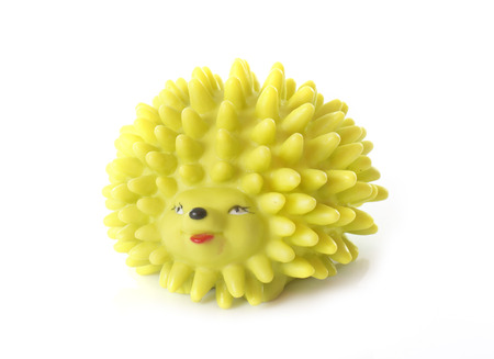 dog toy: dog toy in front of white background