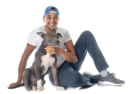 background person: man and puppy american staffordshire terrier in front of white background Stock Photo